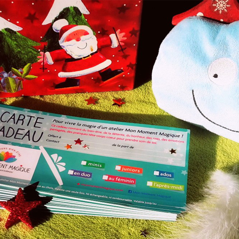 Idée cadeau pour Noël !