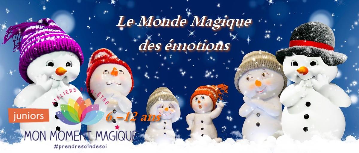 Stage Hiver Les Emotions Magiques (le matin)